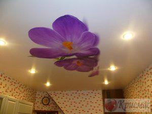Матовый потолок с фотопечатью на кухне