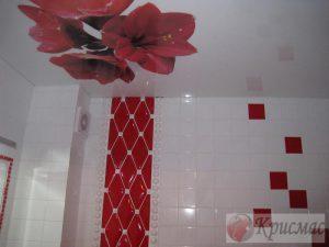 Натяжной потолок с фотопечатью в ванную