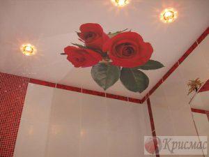 Потолок с фотопечатью в санузле
