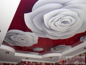 Двухуровневый потолок в зал с фотопечатью